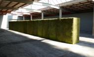 Daniel Karrer mit «Shrubbery» in der Kunsthalle Arbon